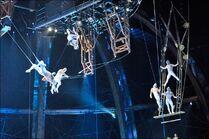 ZED trapecio volante