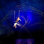 Trapeze - Amaluna