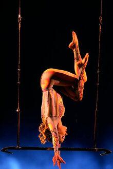 Washington Trapeze Aurora - O
