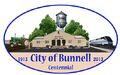 Bunnell, Florida Centennial Logo.jpg