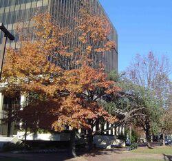 Huntsville-Courthouse