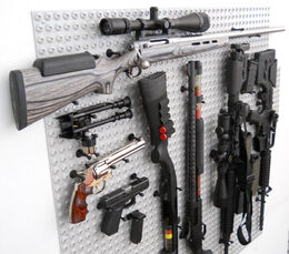 Zombie-Apocalypse-Bag of guns