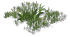 Low Grass03