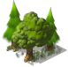 Dense Tree03
