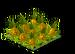 Pineapples Fruit