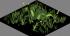 Low Grass02