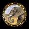 Слоновая кость Civ5