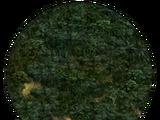 Jungle (Civ5)