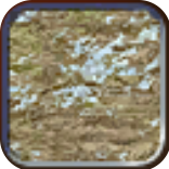 File:Tundra (Civ4Col).png