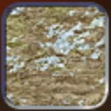 Tundra (Civ4Col)