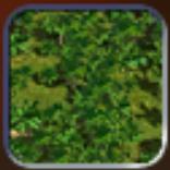 File:Jungle (Civ4Col).png