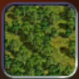 Forest (Civ4Col)