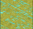 Irrigation (Civ3)