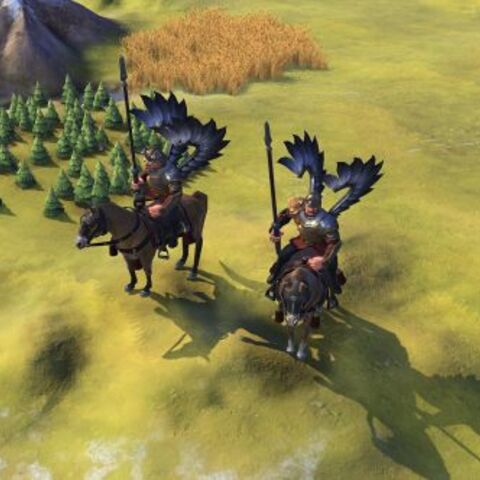 Winged Hussar in game