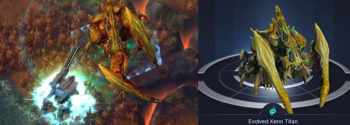 Xeno titan portfolio