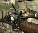 Colt Rifle