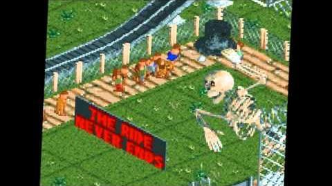 Mr Bones' Wild Ride