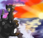 Stormy Roncy coucher de soleil