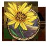 Item arnica flower