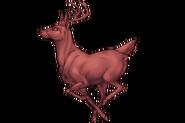 Deer Adult