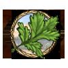Item coriander