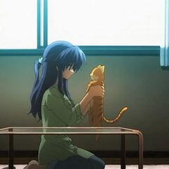 Мисаэ и её кот, Шима в <i><a href=
