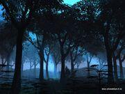 Silusatrium - Blue Moonlight