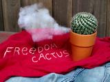 Un cactus libre