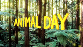 Carta - Animal Day