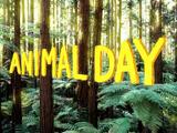 Día animal/Galería