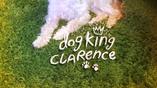 Dog King Clarence card