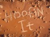 Hoofin' It