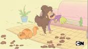 Cat eating Chelsea's hair