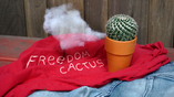 Freedom Cactus Title Card