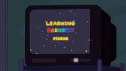 Learning Rainbow Videos