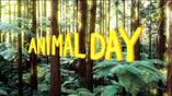 Animal Day card