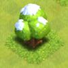 Grote winter boom 2012