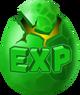 Exp Egg1
