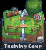 Arena entrenamiento