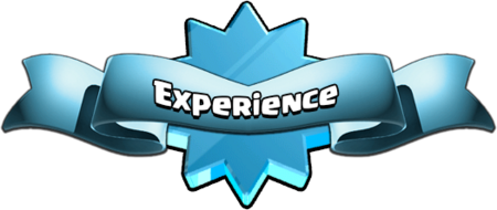 Experience Main Banner