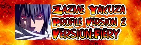 Zazme Profile2