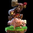 Schweinereiter