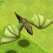 Dragon level 1