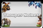 Boutons-troupesnoiresVP
