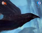 PowerFlux0 Raven Mini