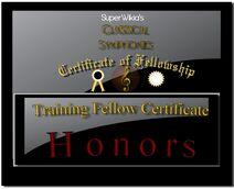Classical Symphonies Training Certificate
