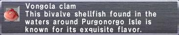 Vongola clam