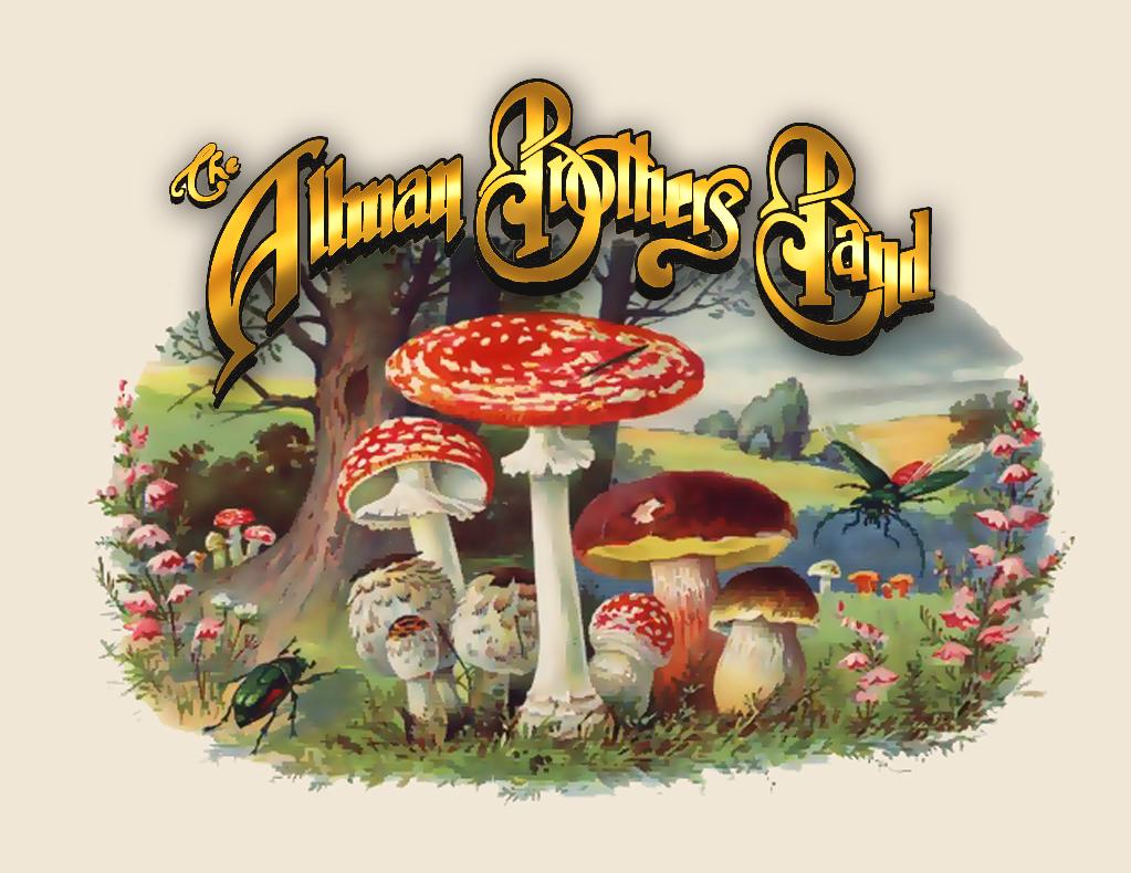 Allman Brothers Band | Classic Rock Wiki | Fandom