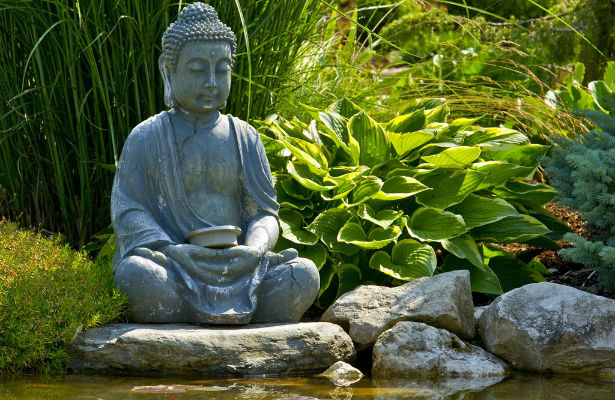 Zen Buddhism | Classification Wiki | Fandom