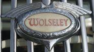 Wolseley Hood badge